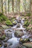 Córrego da montanha no outono Fotografia de Stock Royalty Free