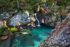 Córrego da montanha no vale de Lepena Imagens de Stock