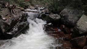 Córrego da montanha que cai através dos pedregulhos filme