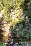 Córrego da montanha que flui entre as inclinações íngremes das montanhas de Rhodope Fotografia de Stock