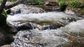 Córrego da montanha que pisa - abaixo de alguns pedregulhos filme