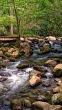 Córrego da montanha rochosa Fotos de Stock Royalty Free