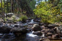 córrego da montanha rochosa Fotografia de Stock