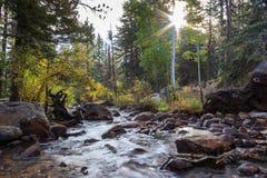 córrego da montanha rochosa Foto de Stock Royalty Free