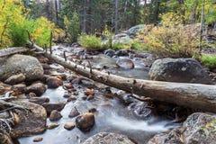 córrego da montanha rochosa Fotografia de Stock Royalty Free