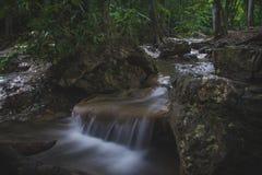 Córrego da natureza na madeira Fotografia de Stock Royalty Free