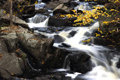 Córrego da queda Fotos de Stock Royalty Free