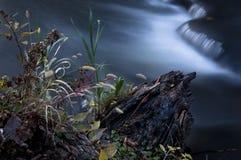 Córrego da queda Fotografia de Stock Royalty Free