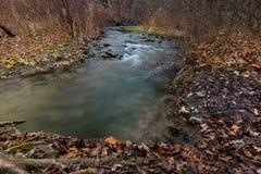 Córrego da queda em Dundas Imagens de Stock