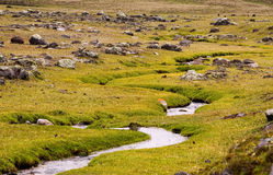 Córrego das montanhas Foto de Stock Royalty Free