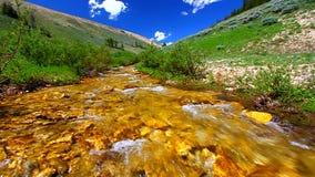 Córrego das montanhas do Bighorn