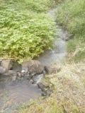 Córrego de acalmação Imagens de Stock Royalty Free