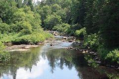 Córrego de Adirondack Fotos de Stock