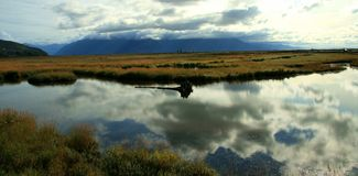 Córrego de Alaska Fotos de Stock