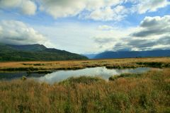 Córrego de Alaska Fotografia de Stock Royalty Free