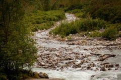 Córrego de Alaska Fotografia de Stock