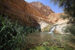 Córrego de Arugot Imagens de Stock