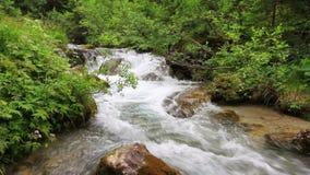 Córrego de Avisio no vale de Fassa video estoque