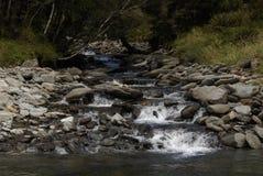 Córrego de Bush com rochas grandes. Imagens de Stock