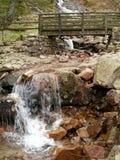 Córrego de caída 1 Imagem de Stock