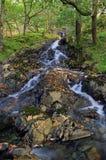 Córrego de caída da montanha, Hafod-y-llan Foto de Stock