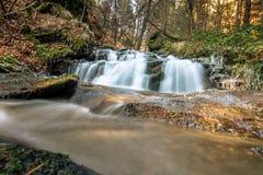 Córrego de conexão em cascata na floresta Imagens de Stock