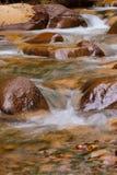 Córrego de fluxo Imagens de Stock Royalty Free