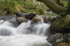 Córrego de fluxo Imagem de Stock Royalty Free