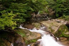 Córrego de fluxo foto de stock