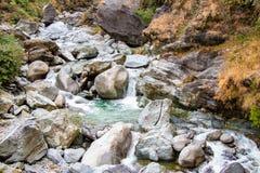 Córrego de fluxo através das rochas musgosos verdes na floresta, imagem de stock royalty free
