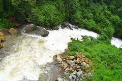 Córrego de fluxo com água, as pedras, e hortaliças espumosas brancas - papel de parede natural da paisagem fotos de stock