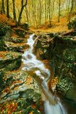 Córrego de fluxo do outono foto de stock royalty free