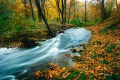 Córrego de fluxo do outono imagem de stock royalty free