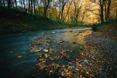 Córrego de fluxo do outono imagem de stock