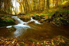 Córrego de fluxo do outono fotografia de stock