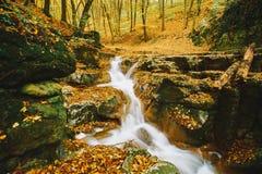 Córrego de fluxo do outono fotos de stock royalty free