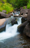 Córrego de fluxo em Havaí Fotos de Stock Royalty Free