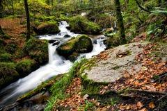 Córrego de fluxo nos moinhos da pólvora do vale de Kennall Foto de Stock