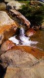 Córrego de formação de espuma que flui abaixo das pedras sob a luz do sol no parque, Moscou, Zelenograd, Rússia foto de stock royalty free