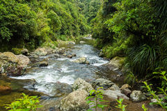 Córrego de Kahuterawa Foto de Stock Royalty Free