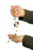 Córrego de moedas douradas Fotografia de Stock