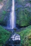 Córrego de Multnomah Imagem de Stock Royalty Free
