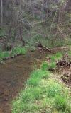 Córrego de Ozark Imagem de Stock