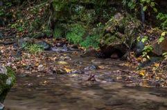 Córrego de pedra fotografia de stock