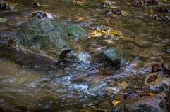 Córrego de pedra foto de stock royalty free