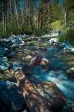 Córrego de pressa da montanha Fotografia de Stock