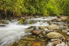 Córrego de pressa da montanha Fotos de Stock