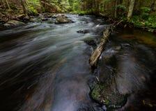 Córrego de pressa no log velho das madeiras e em Boulder musgoso fotografia de stock royalty free