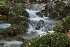 Córrego de seda Imagens de Stock