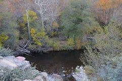 Córrego de Sedona Imagem de Stock
